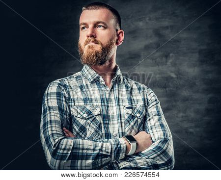 Studio Portrait Of Redhead Bearded Male Dressed In Afleece Shirt Over Grey Background.