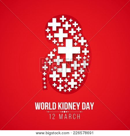 World Kidney Day With White Cross Sign Kidney On Red Background Vector Design