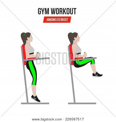 Sport Exercises. Gym Workout. Hanging Leg Raises. Captain's Chair Leg Raise. Illustration Of An Acti