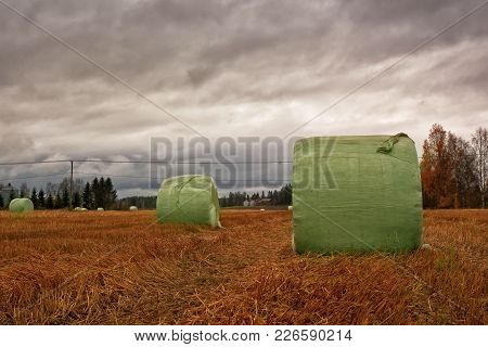 The Hay Bales Have Been Wrapped In Green Plastic On The Autumn Fields. The Dramatic Sky Predicts Som