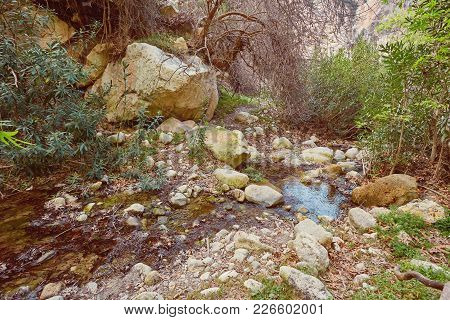Amazing Natural Landscape In The Avakas Canyon In Cyprus. National Sunny Wild Park With Cliffs, Moun