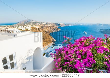 Santorini Island, Greece. Beautiful Terrace With Pink Flowers, Summer Landscape With Sea View
