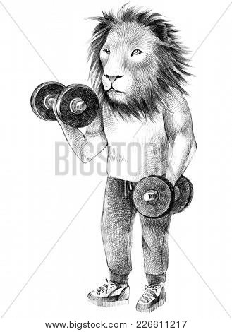 Hand drawn dressed up lion hipster exercising with dumbbell