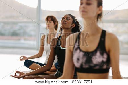Women Meditating In Lotus Pose At Yoga Class