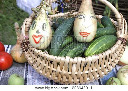 In A Large Basket Lie Cucumbers And Two Large Bulbs With Funny Pattern In The Form Of Faces .