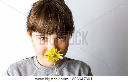 Cute Little Girl Smelling Yellow Spring Flower