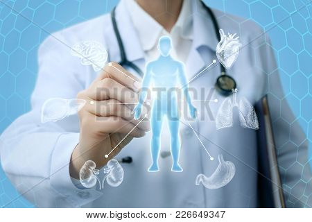 Doctor Shows A Hologram And The Internal Organs Of A Person.