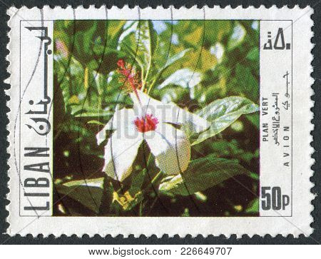 Lebanon - Circa 1971: Postage Stamps Printed In Lebanon, Shows A Flowering, Circa 1971