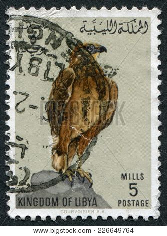 Kingdom Of Libya - Circa 1965: Postage Stamps Printed In Libya, Shows A Long-legged Buzzard (buteo R