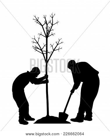 Two Men Planting A Tree. In Eps Vector File Tree And Workers Are Separated.