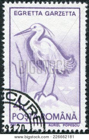 Romania - Circa 1991: A Stamp Printed In The Romania, Shows The Little Egret (egretta Garzetta), Cir
