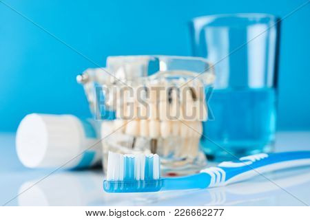 Toothbrush, Toothpaste, Dental Mouthwash Glass And Teeth Jaw Model On Blue Background, Close-up. Ora
