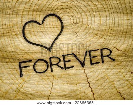 Illustration of a wooden heart love forever branding