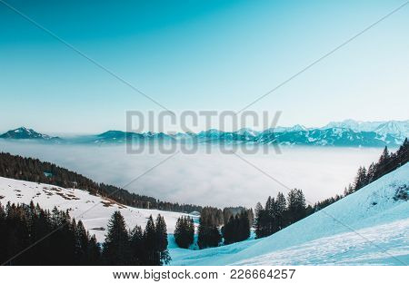 Cold blue winter mountain landscape with evergreen forest, snow and low lying cloud filling a valley with distant snowy mountain peaks visible above