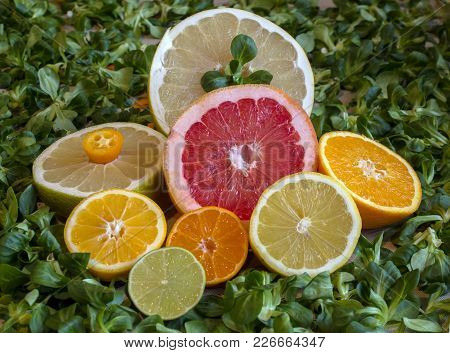 Cut Citruses Of Different Flavor, Color And Size On A Green Background.