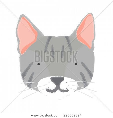 Illustration of adorable cat