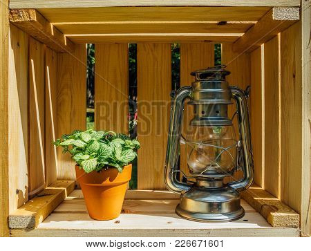 Kerosene Lamp And Pot With Houseplant In Wooden Box.