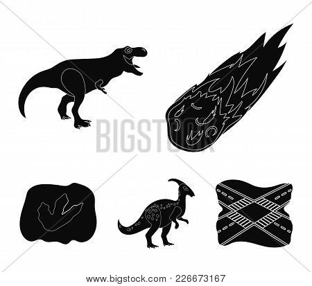 A Falling Meteorite,parasaurolophus, Tyrannosaurus, An Imprint Of A Dinosaur's Foot. The Dinosaur An