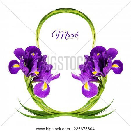 Greeting Card International Women's Day on March 8th. Branches of iris in the form of number eight. Isolated on white background