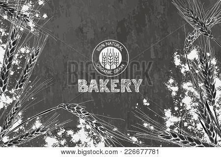 Vector Bakery Vintage Background Design. Concept For Bakery Menu, Organic Flour, Grain And Cereal Pr