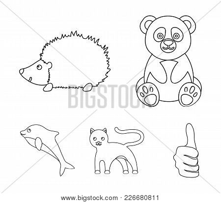 Panda, Hedgehog, Dolphin, Panther.animal Set Collection Icons In Outline Style Vector Symbol Stock I