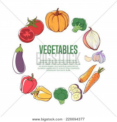 Fresh Vegetables Round Concept On White Background. Carrot, Pumpkin, Cucumber, Onion, Pepper, Tomato