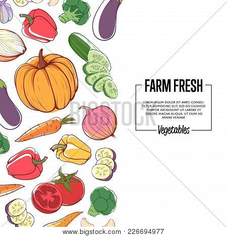 Farm Fresh Banner With Ripe Mixed Vegetables. Carrot, Pumpkin, Cucumber, Onion, Pepper, Tomato, Eggp