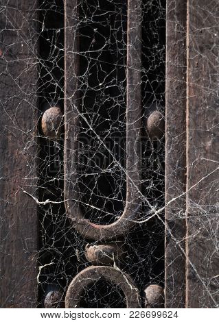 A Tangle Of Cobwebs On An Old Decorative Metal Door. The Door Is Sunlit.