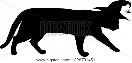 Silhouette Of Walking Black Cat In Witch Hat With Spider Isolated On White Background. Vector Illust