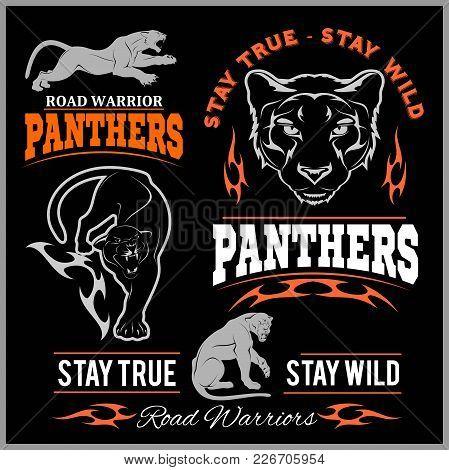 Panther Sport T-shirt Graphics, Vintage Apparel Typography, Artwork Stamp Print Design, Wild Big Cat