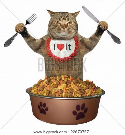 The Hungry Cat With A Knife And A Fork Sits In Front Of The Big Bowl Of Dry Feed. White Background.