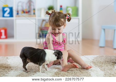 Child Girl Playing With The Dog On Floor At Home