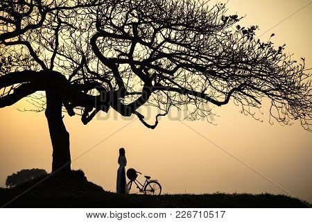 Beautiful Landscape With Trees Silhouette At Sunset With Vietnamese Woman Wearing Traditional Dress