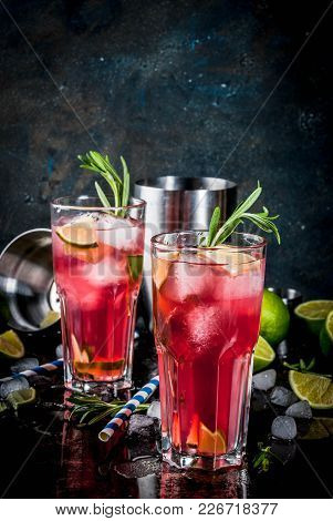 Refreshment Alcoholic Red Cranberry And Lime Cocktail With Rosemary And Ice, Two Glass, Dark Backgro