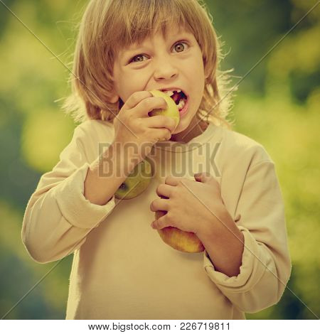 Portrait Of Cute Little Blonde Boy With Milk Teeth Eating Apple. Image With Warm Vintage Toning