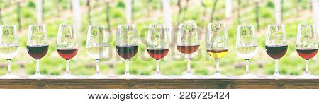 Glasses With Wine. Red, Pink, White Wine In Glasses.