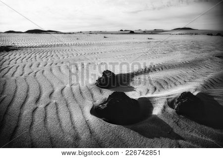 Volcanic Rocks, Windswept Among The Sand Dunes Of Corralejo, On The Island Of Fuerteventura, Las Can