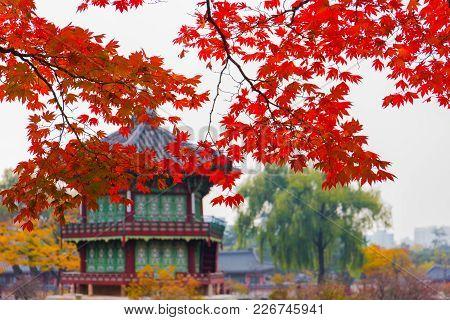 Autumn Season Of  Gyeongbokgung Palace In Seoul,south Korea.