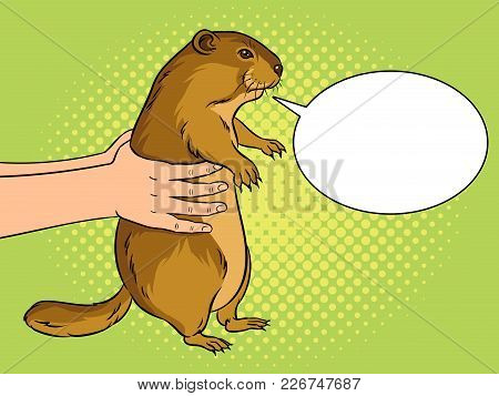 Groundhog Animal In Hands Pop Art Retro Vector Illustration. Marmot Predictor. Text Bubble. Color Ba