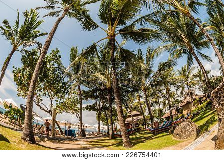 A Scenery Of A Tropical Beach On Bali Island, Indonesia.  A Lot Of Palms, High As Skyscrapers, Ocean