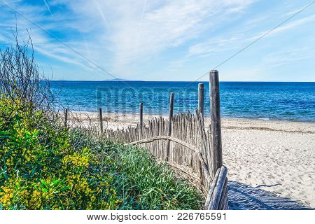 Flowers And Palisade By The Sea In Sardinia, Italy