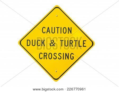 Caution Duck And Turtle Crossing Sign Isolated Background