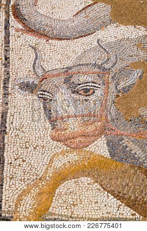 Fragment Of Antique Mosaic At The Archaeological Park Of Dion. Pieria, Macedonia, Greece