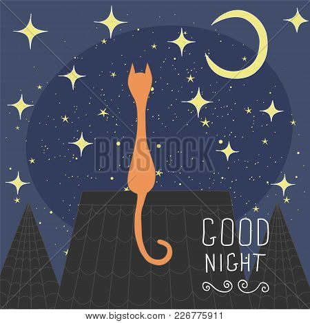 Cats On The Roof Of The Night City. Hand Drawn Elements For Your Designs.