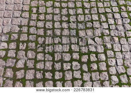 Pavement With Green Moss Growing In Joints