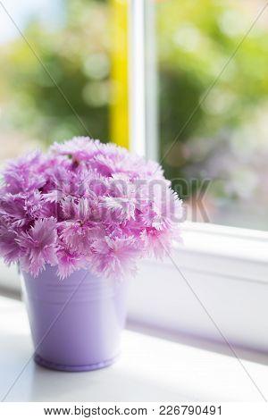 Little Purple Bucket With Tender Bouquet Of Beautiful Pink Carnation Near Window In Daylight