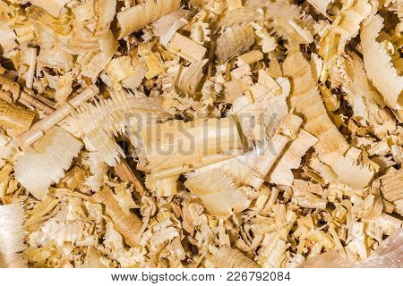 Beautiful Background Of Sawdust, Close-up Texture Image