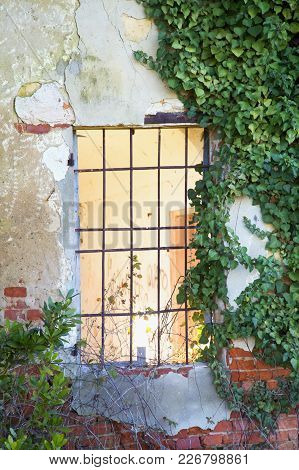 Window Of A House In Ruins, Vertical Image