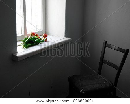 Tulips On A Windowsill, A Chair By The Window, A Conceptual Picture With Flowers And Antique Furnitu