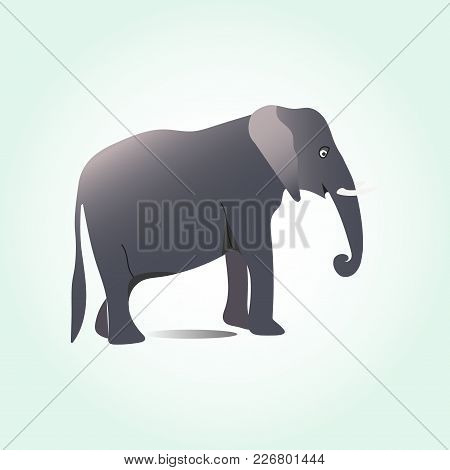 Elephant Large Cartoon Mammal Isolated On White. African Bush Or Forest Elephant And Asian Elephant.